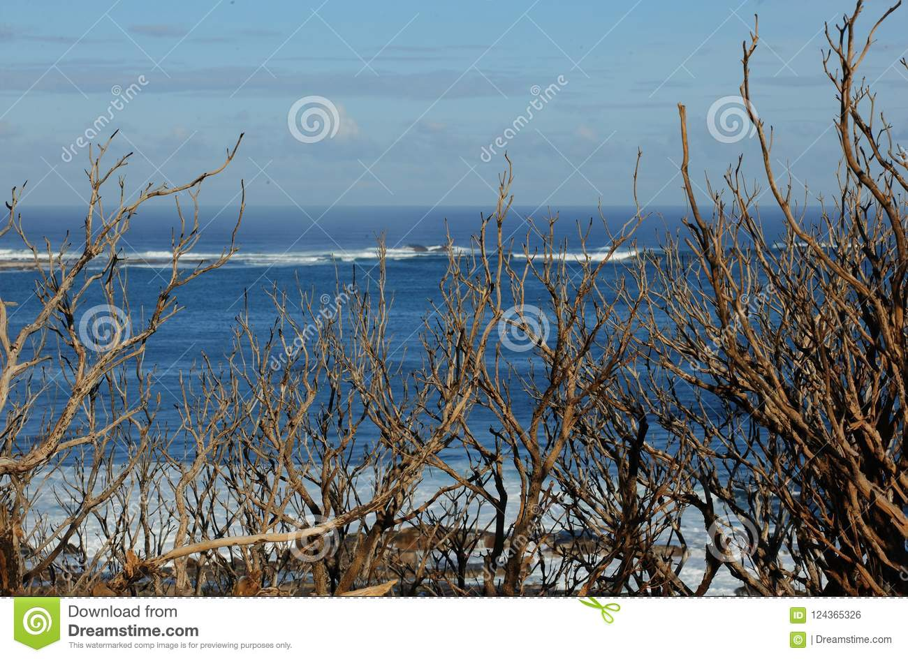 Generic scene of a beach with waves breaking.