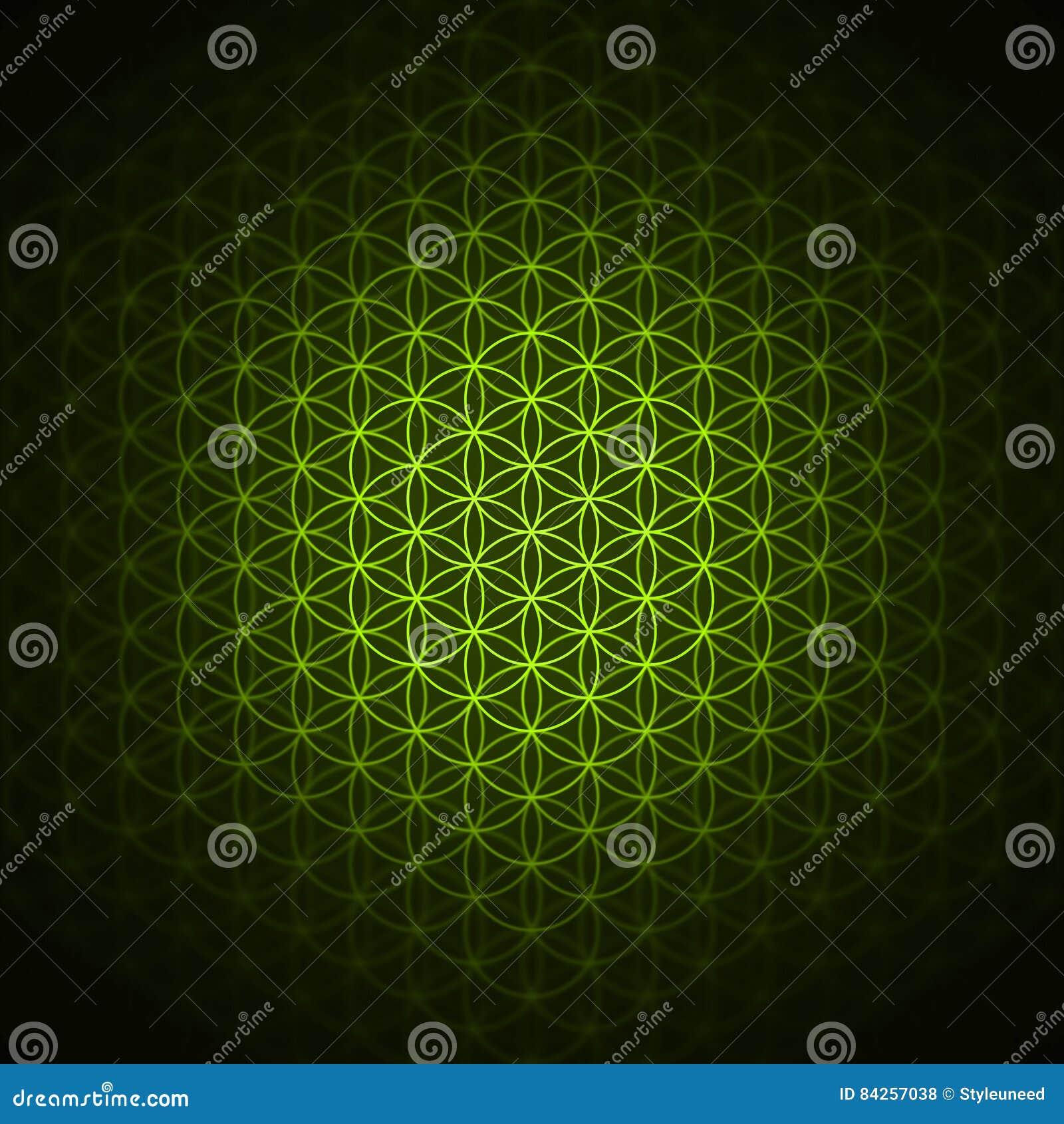 Genesis Pattern The Flower Of Life Green Stock