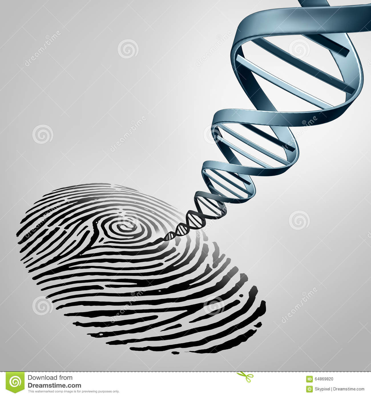 Genetic fingerprinting as a fingerprint with DNA emerging out as a ...