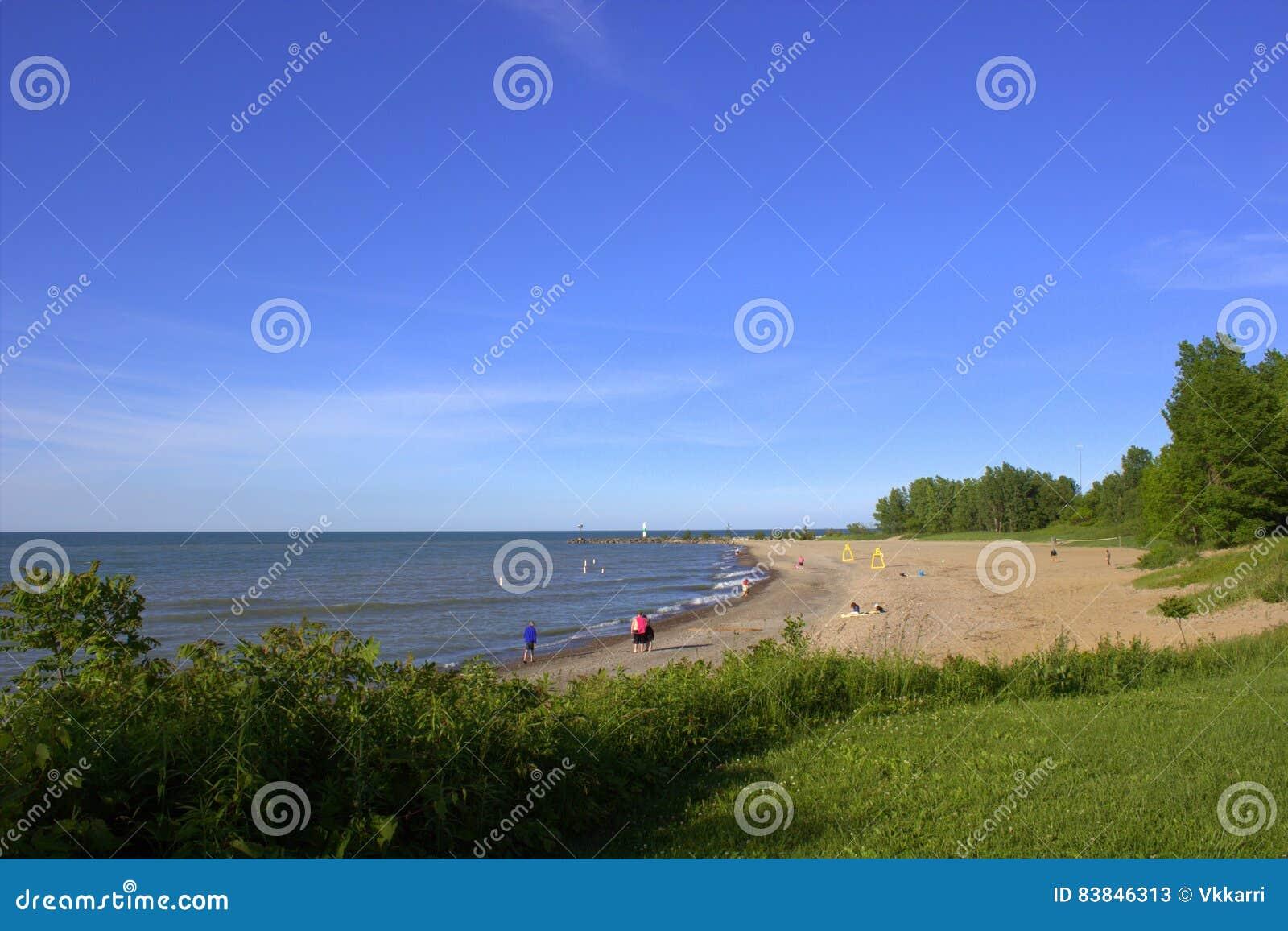 Sunny beach shoreline