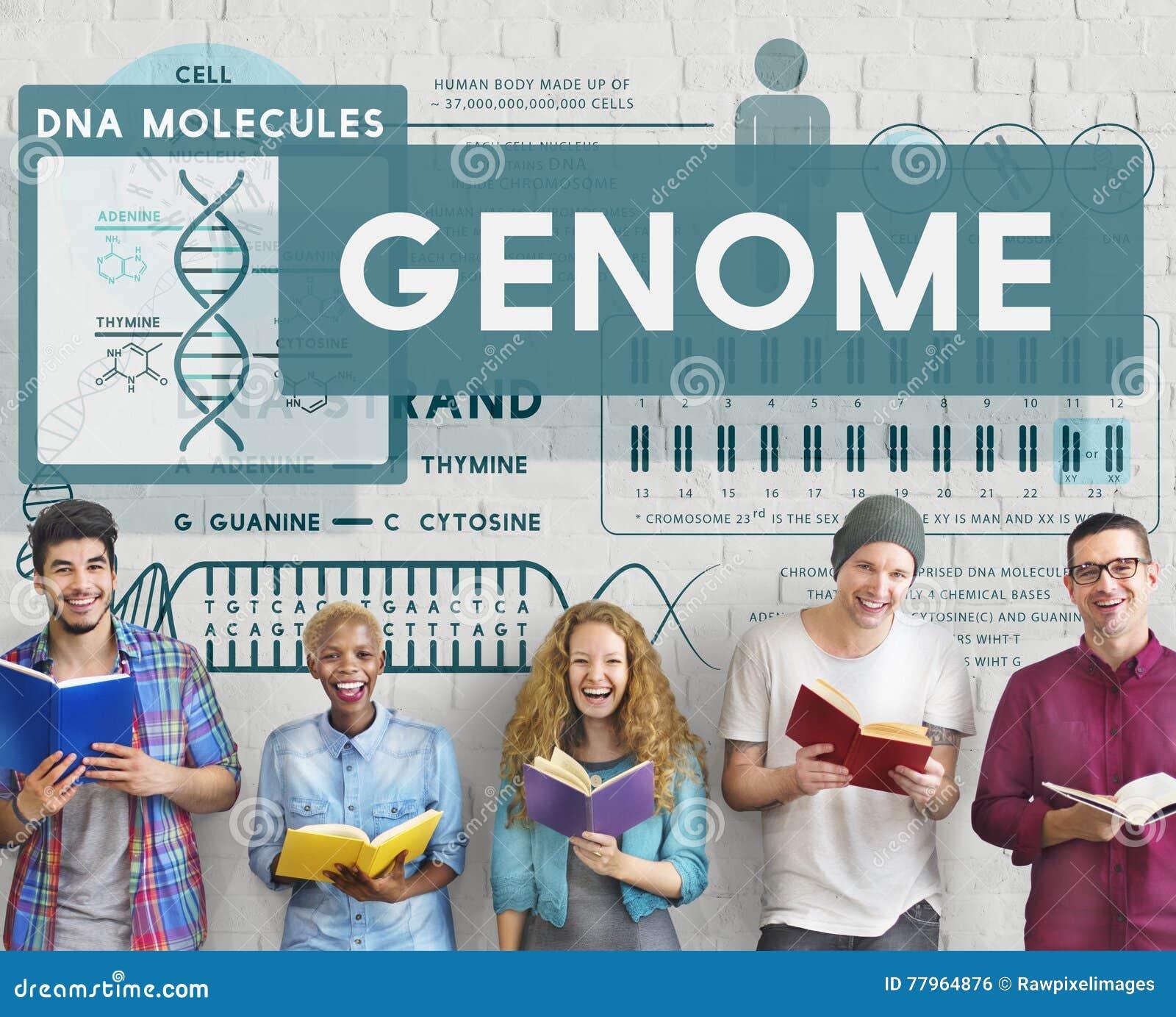Genom som kodifierar begrepp för stam för identitet för biologicellDNA