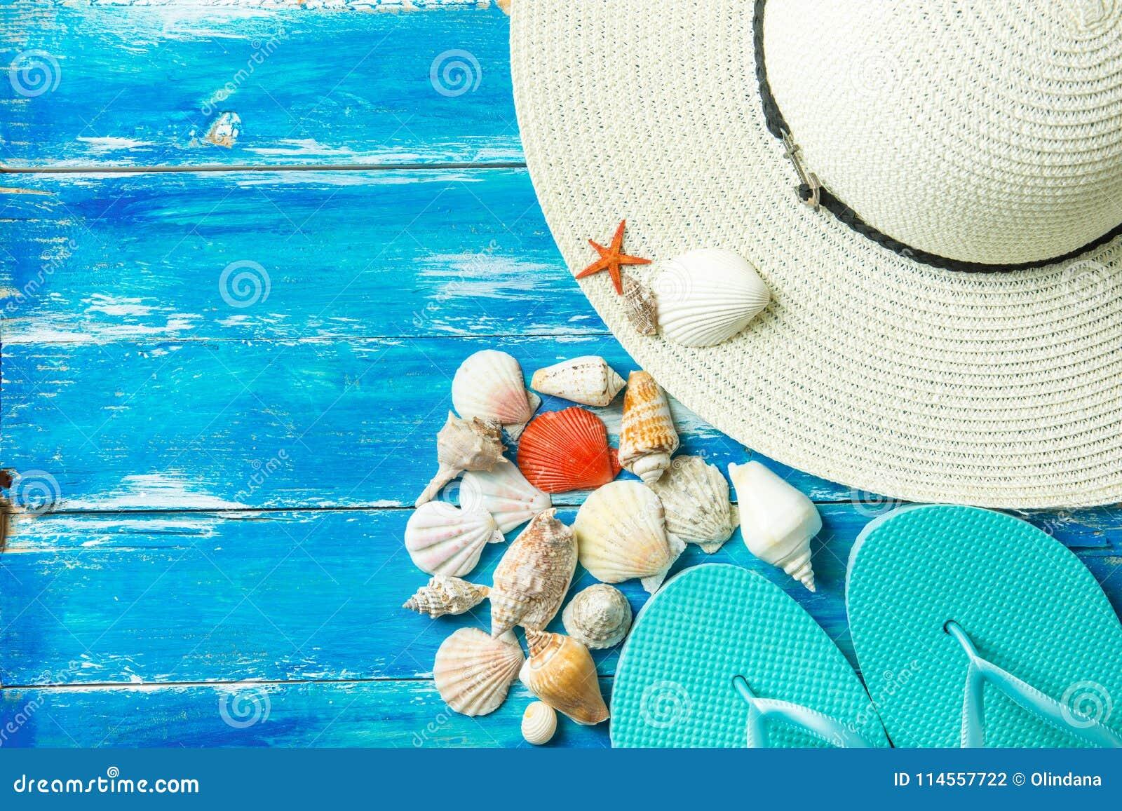 Genres de pantoufles de chapeau du ` s de femmes les divers de mer plate en spirale écosse les poissons rouges d étoile sur le fo