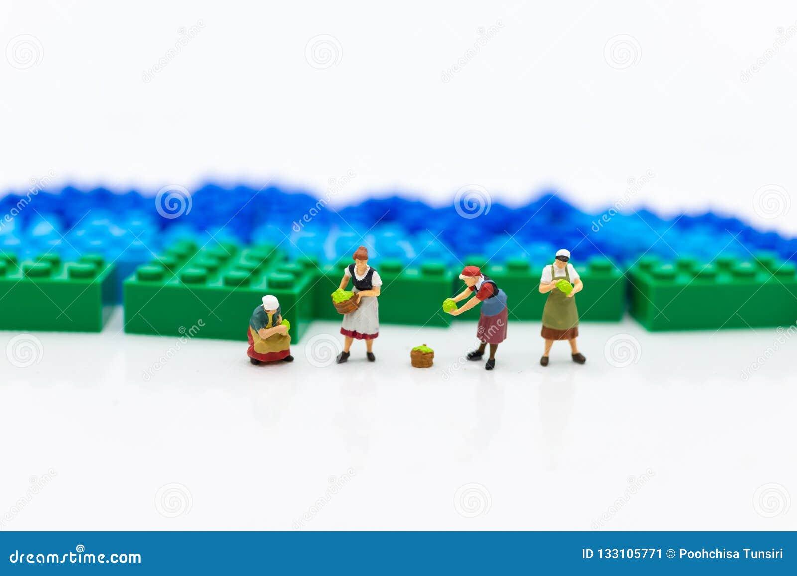 Gente miniatura: Giardinieri ed i risultati di agricoltura, verdure Uso di immagine per distribuzione al mercato