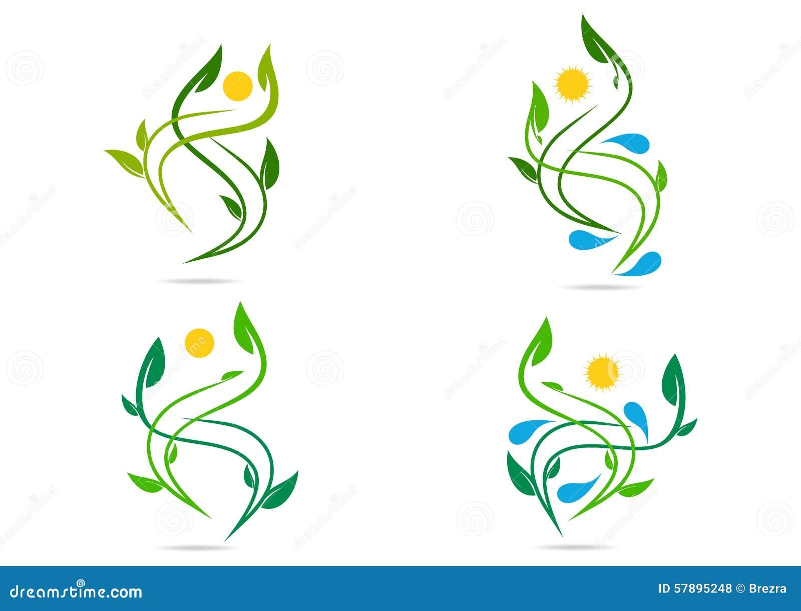 Gente, planta, agua, natural, logotipo, salud, sol, hoja, ecología, sistema del vector del diseño del icono del símbolo