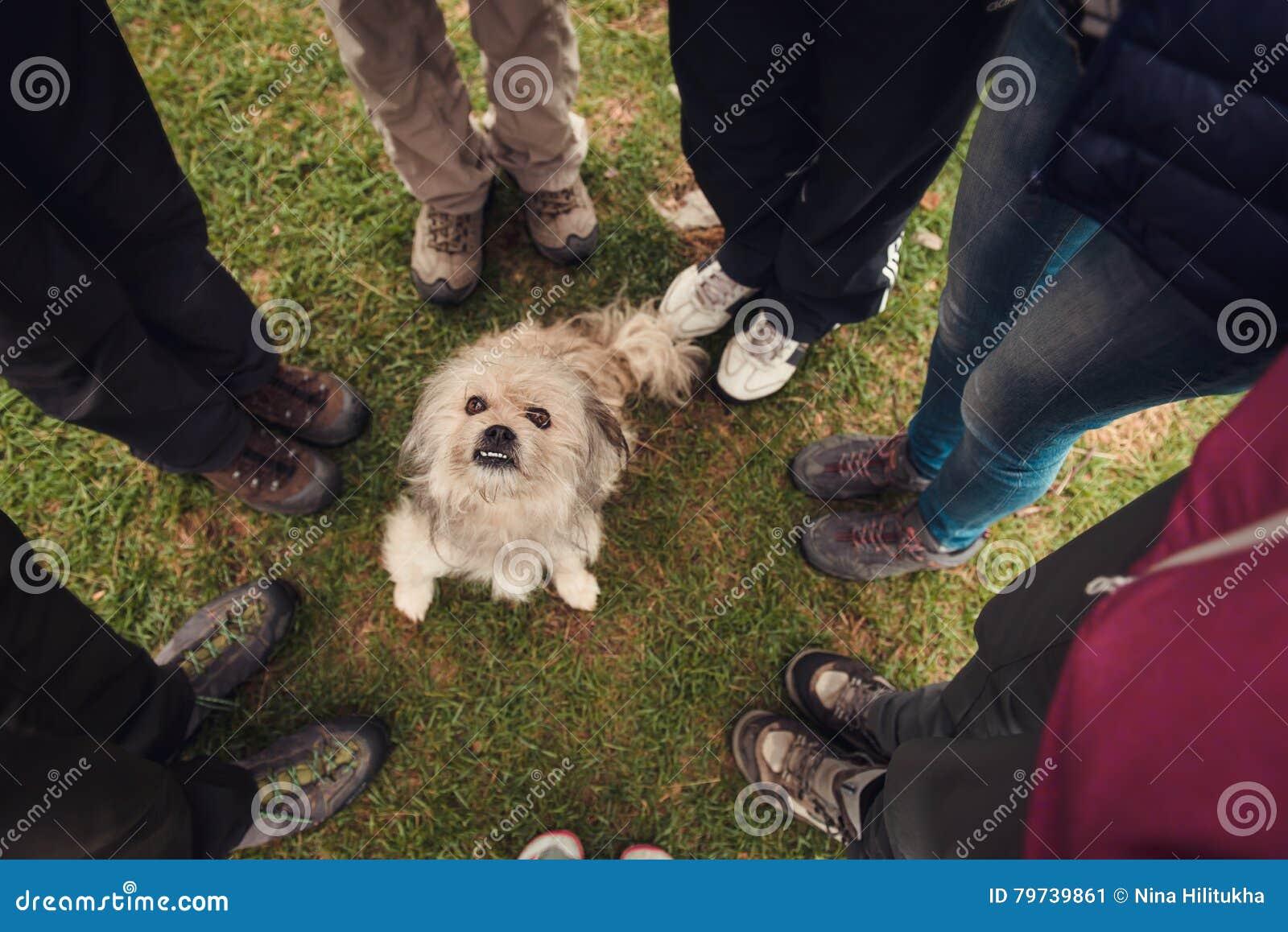 Gente que se coloca alrededor de perro sin hogar