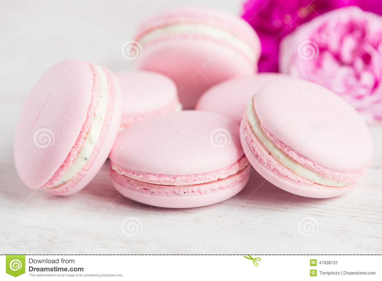 gentle pink macaroons with rose stock image image of flavor gentle 47638131. Black Bedroom Furniture Sets. Home Design Ideas