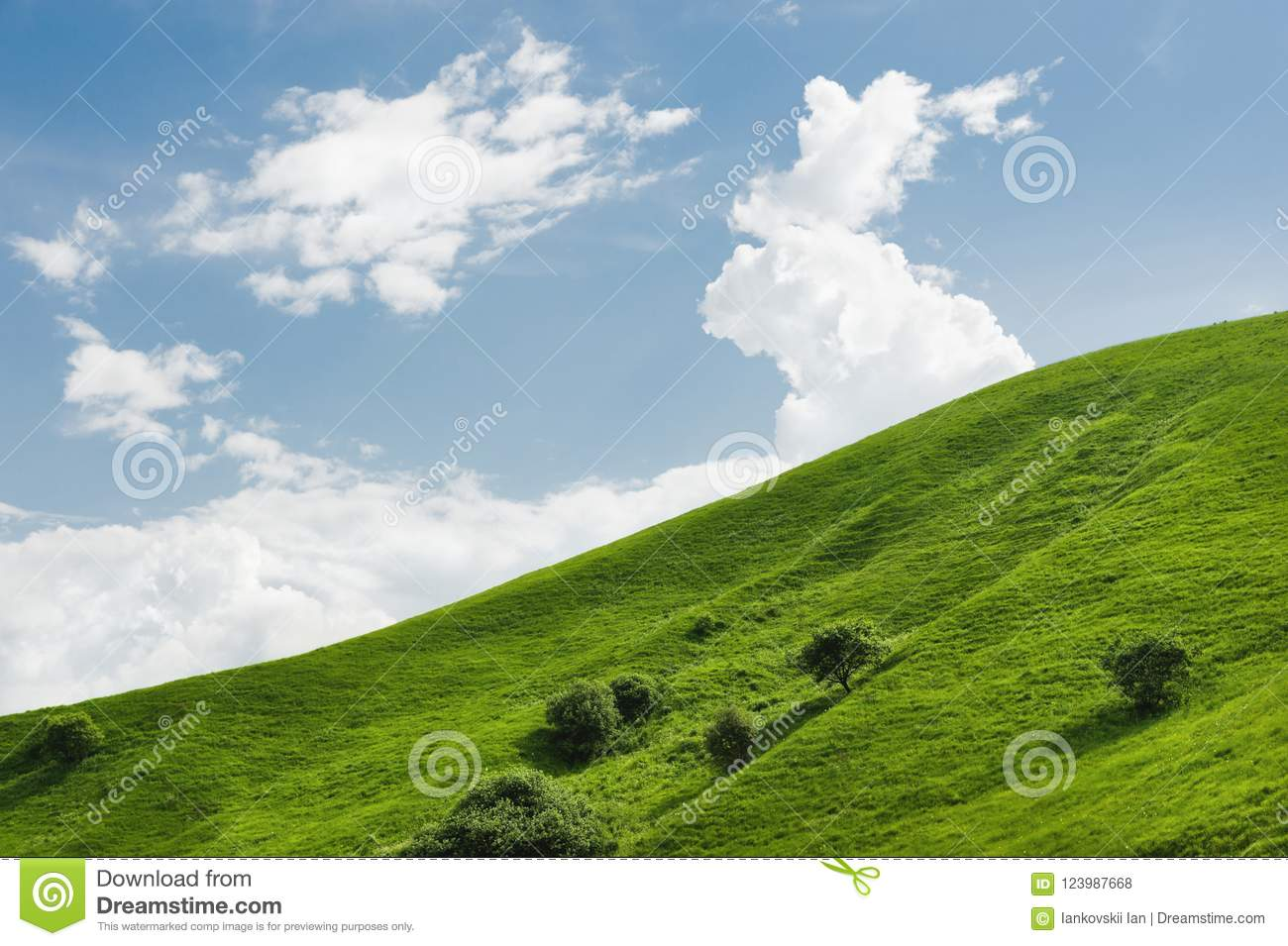 A gentle slope of a green hill with rare trees and lush grass against a blue sky with clouds. The Sonoma Valley