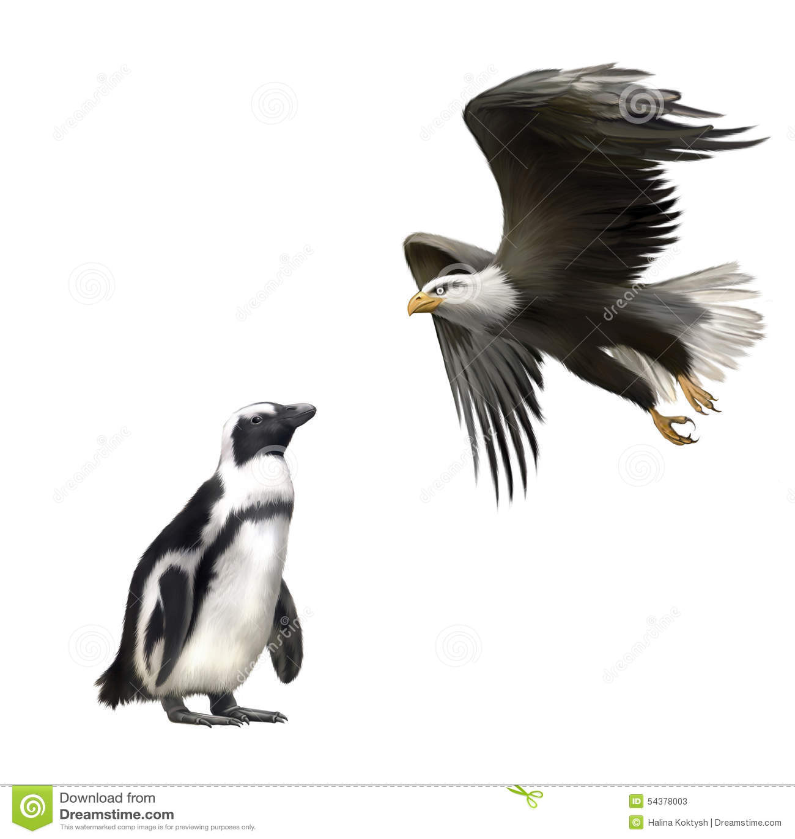 Gentoo pingvin, amerikansk skallig örn i flykten