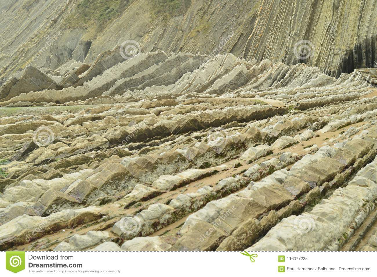 Geological Formations In Beach Of The Flysch Type Geopark Basque