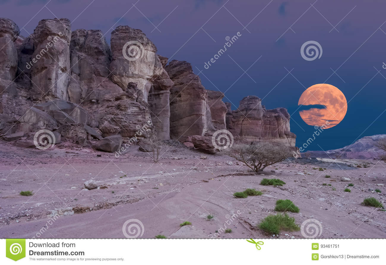 Geological formations in nature desert valley of Timna park, Israel