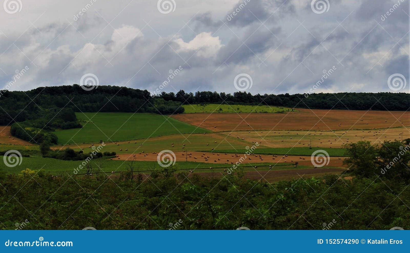 Geometría del campo después de la tormenta