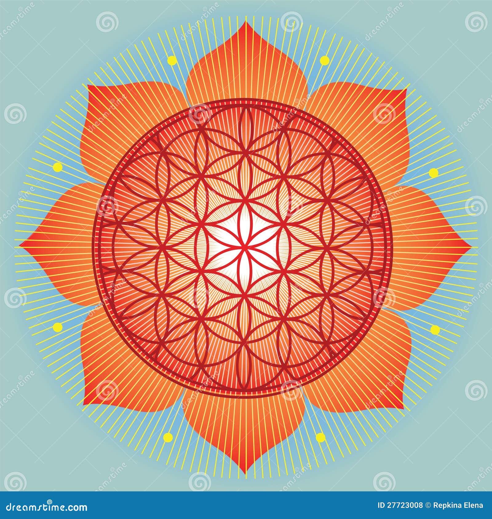 Geometria święty słonecznik