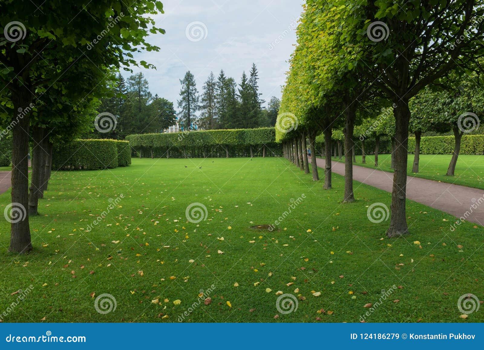 Geometria w parku