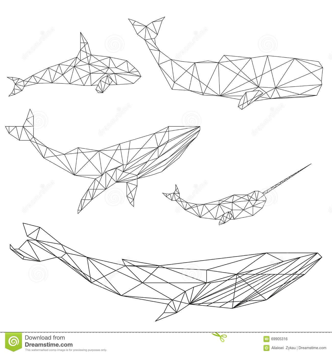 geometric whale set stock vector image of cachalot shark fin gobos shark fin theory domestic violence