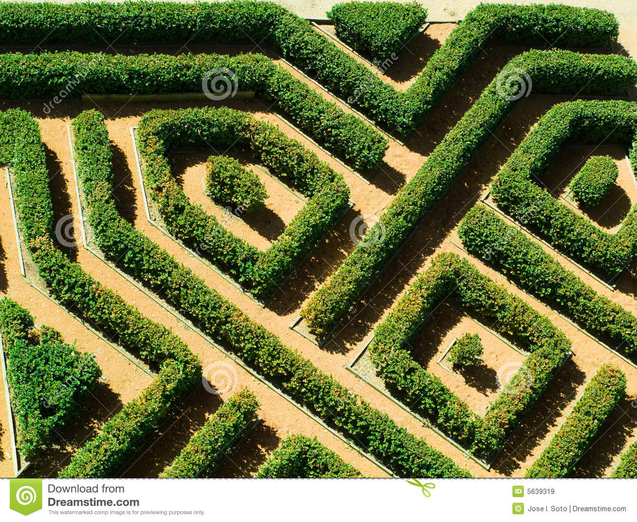 Geometrical garden royalty free stock images image 5639319 for Geometric garden designs
