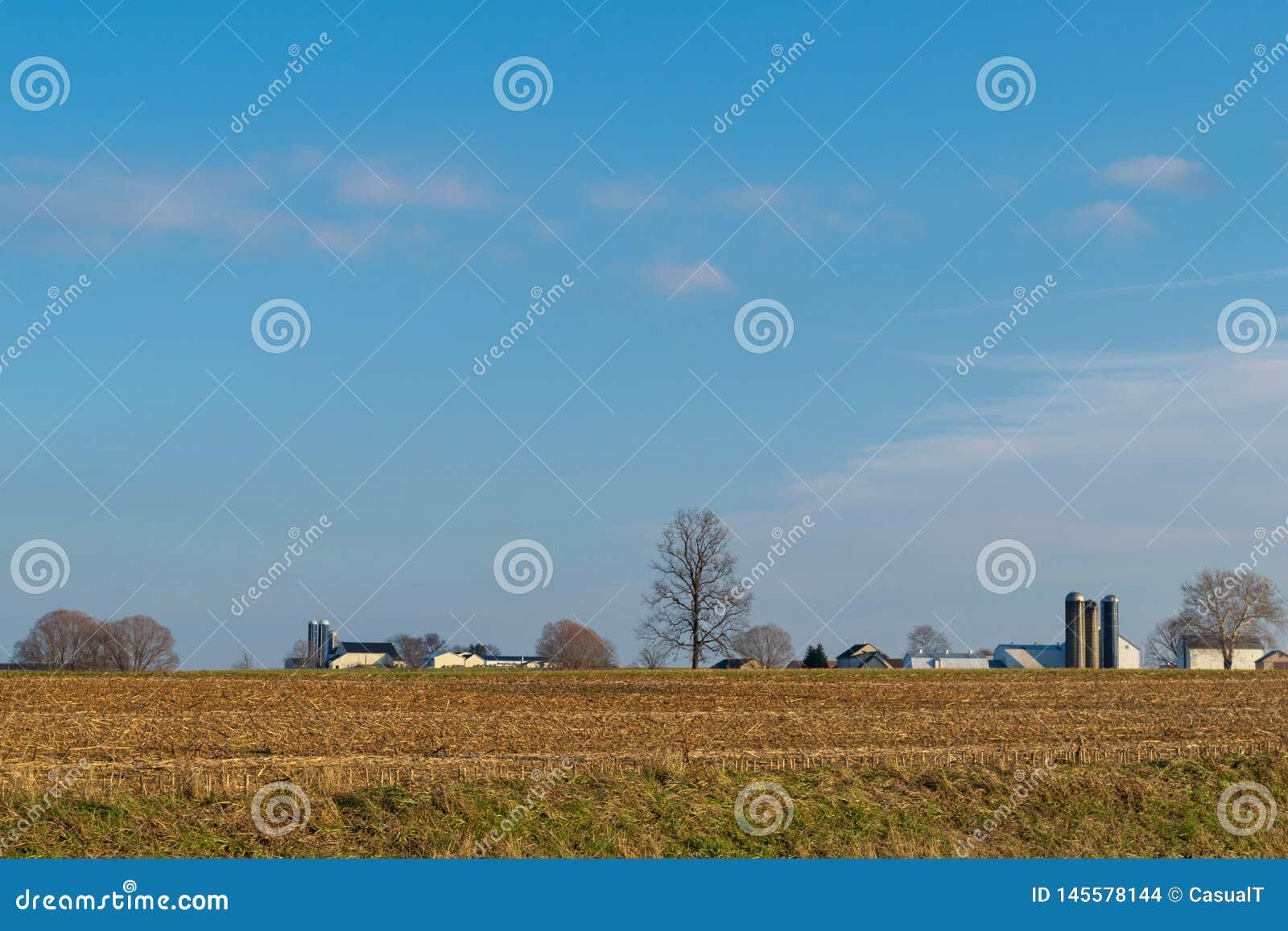 Geoogst gebied van graan, met bomen en een Amish-landbouwbedrijfhuis, op een mooie dag met blauwe hemel, de Provincie van Lancast