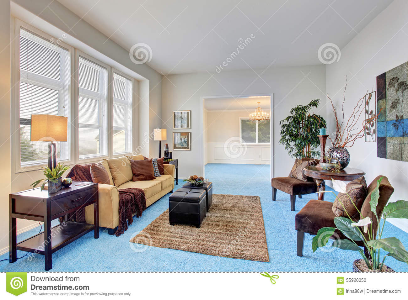 georgous living room with bright blue carpet stock photo image of rh dreamstime com blue carpet living room decorating ideas navy blue carpet bedroom ideas