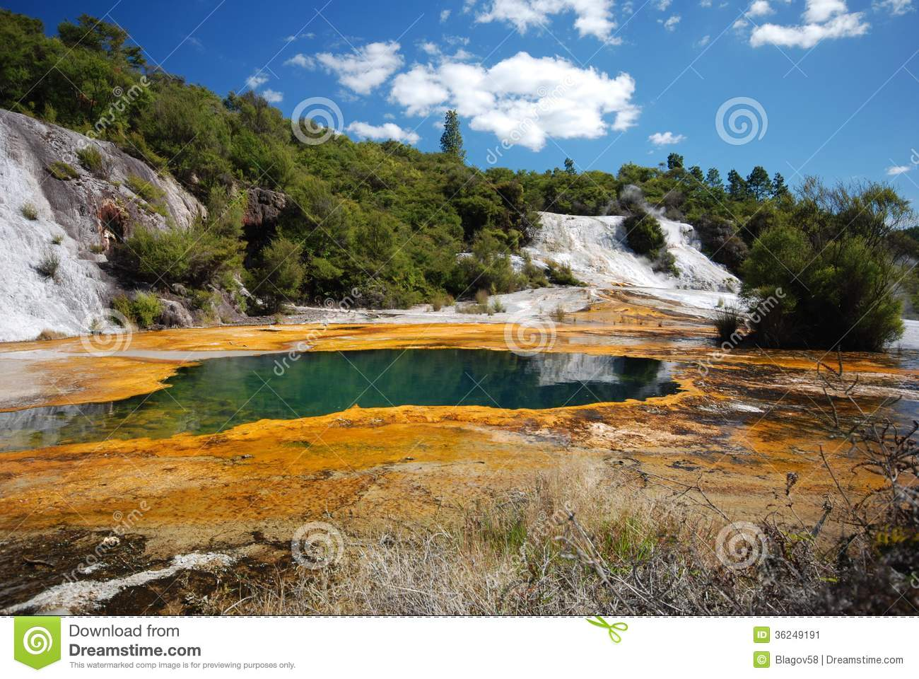 This Is A Thermal Area In The North Island