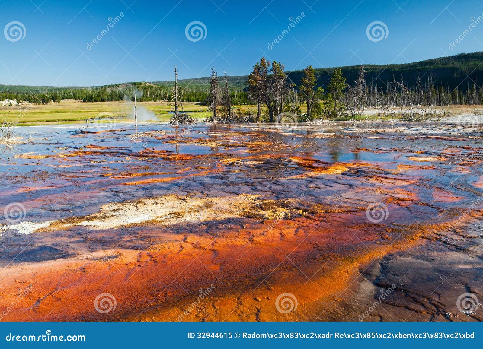 Geothermisch gebied in het Nationale Park van Yellowstone