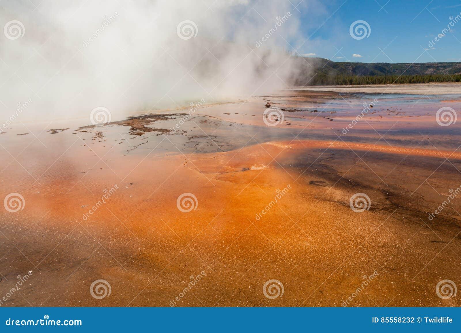 Geothermische heiße Quellen Yellowstone