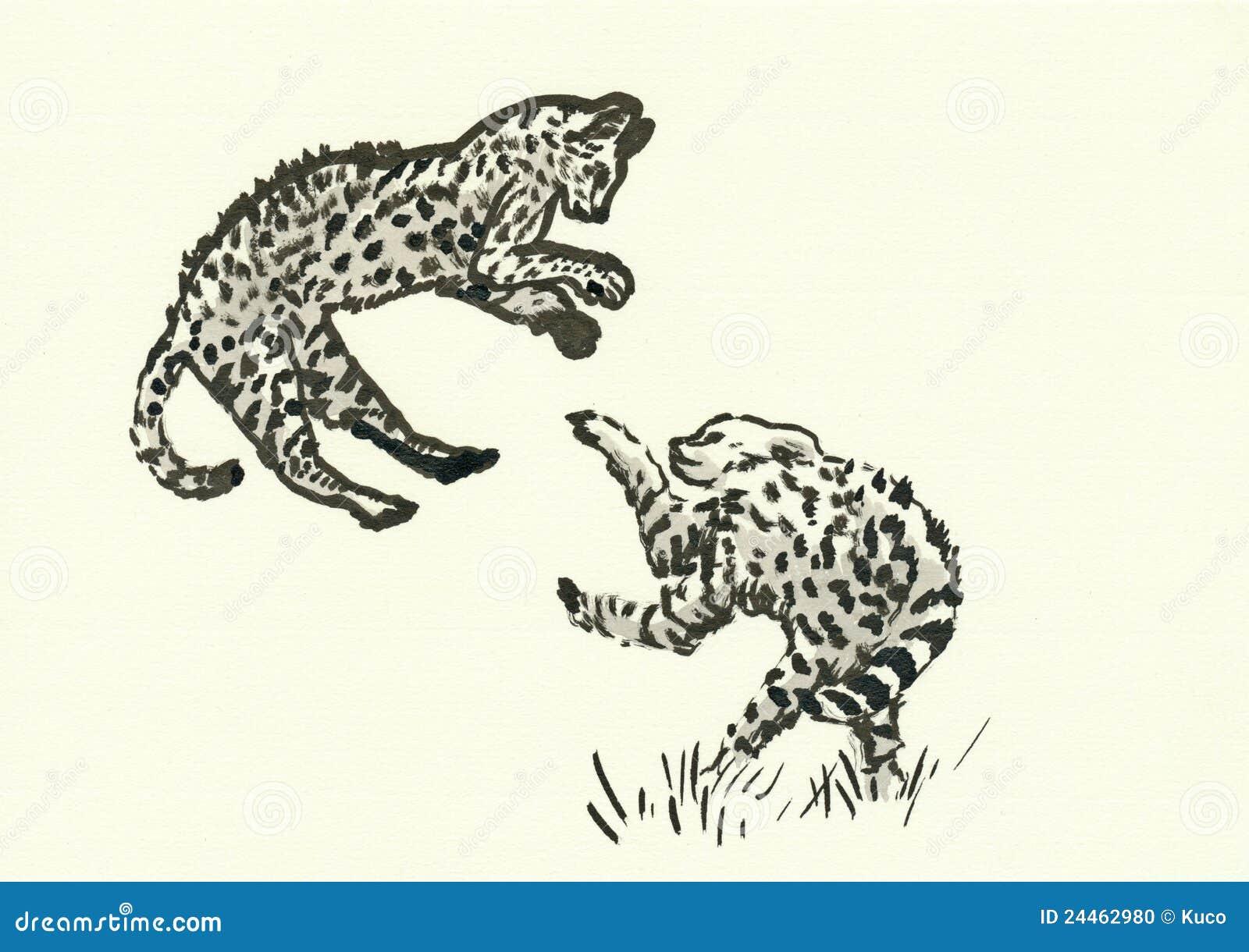 Gepardów lisiątka