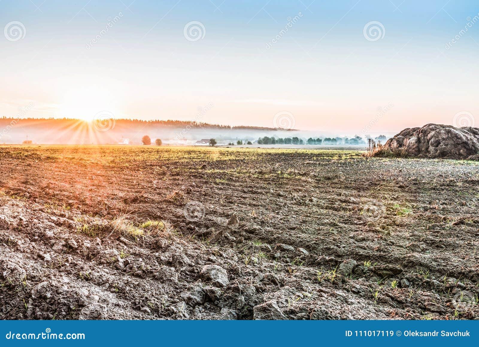 Gepflogen, nachdem ein Feld nahe Kiew, Ukraine geerntet worden ist Nebel über dem Feld früh morgens Eine ländliche Landschaft mit
