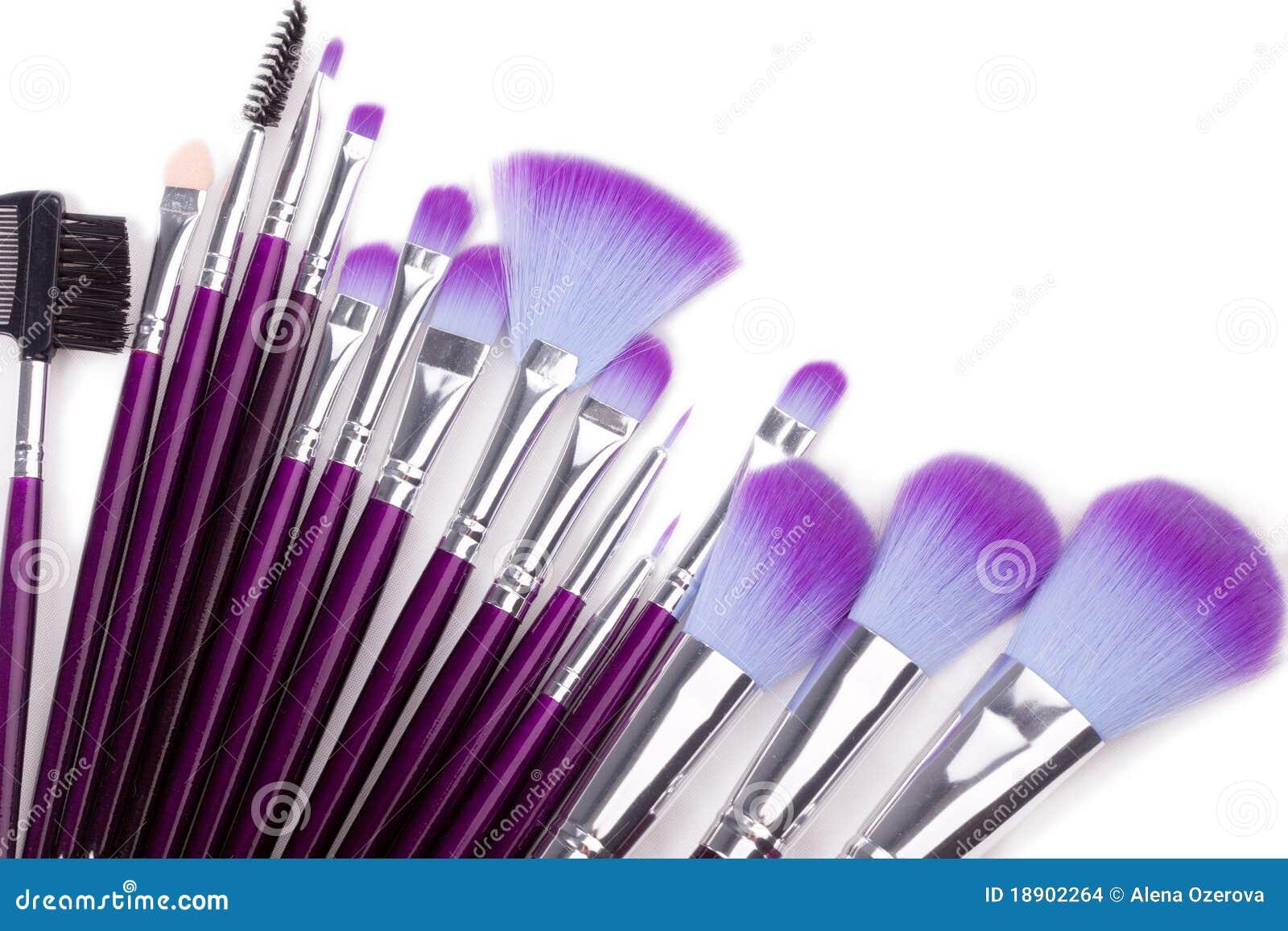 Geplaatste de borstels van de make-up