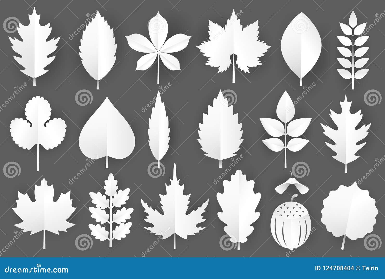 Geplaatste de herfstbladeren van de Witboekbesnoeiing 3d dalingselementen op grijze achtergrond worden geïsoleerd die Vector illu