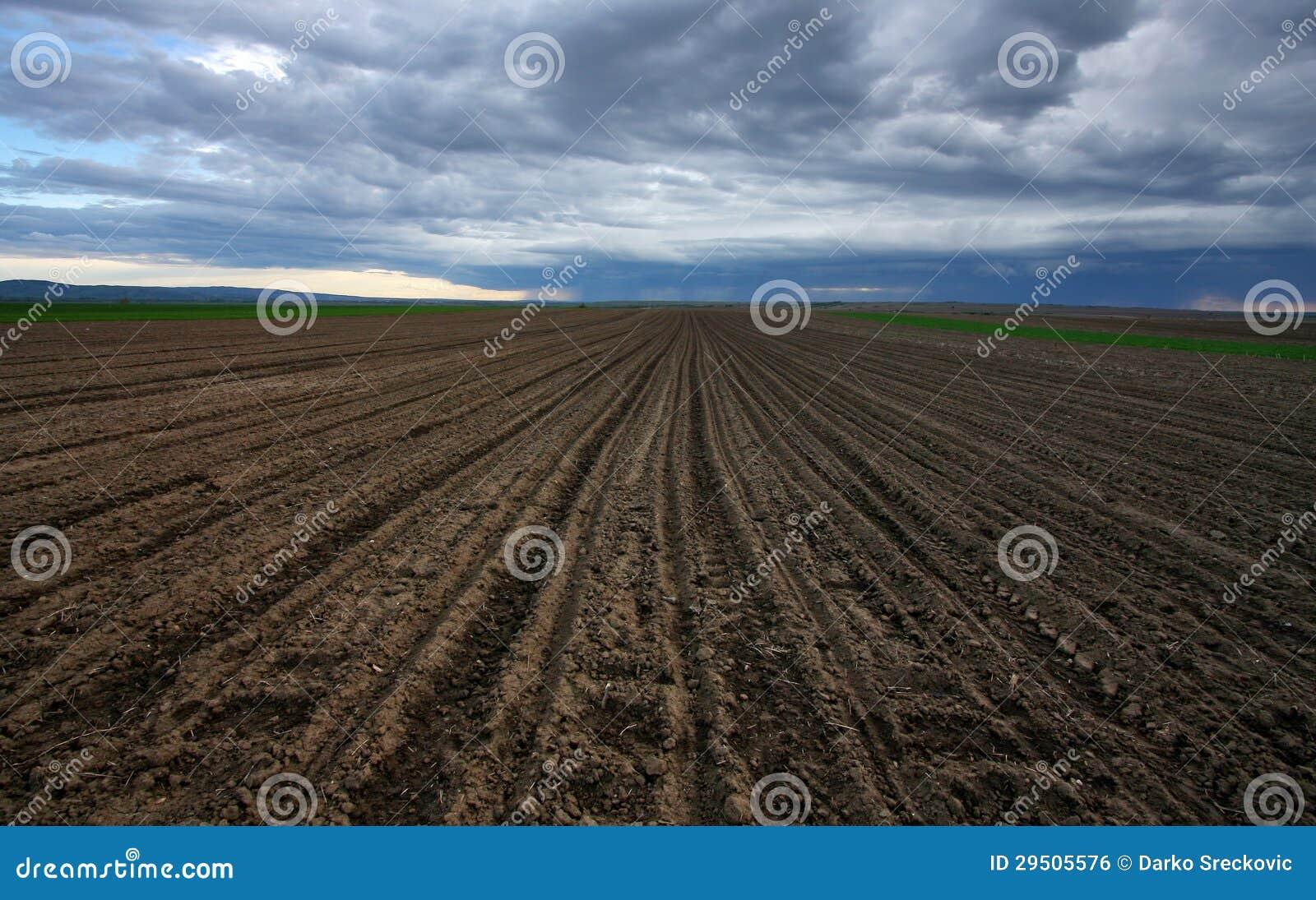 Geploegde grond