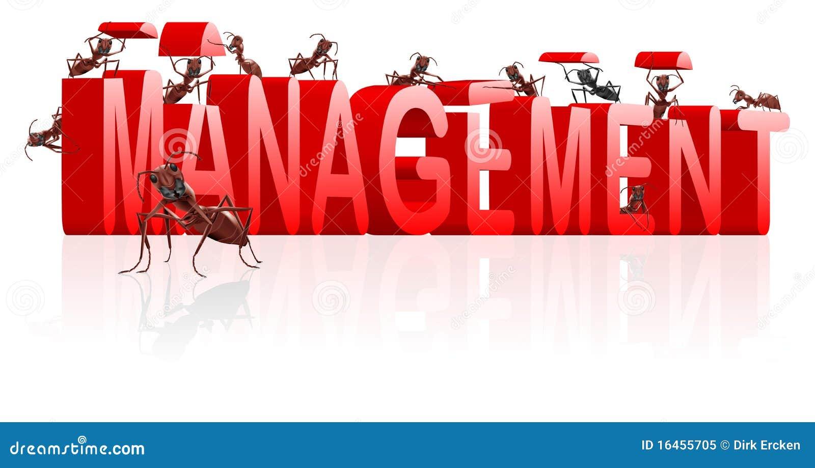 A gerência controla a organização organiza