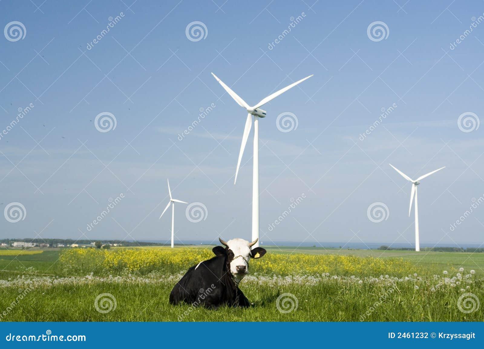 Geradores e vaca de vento