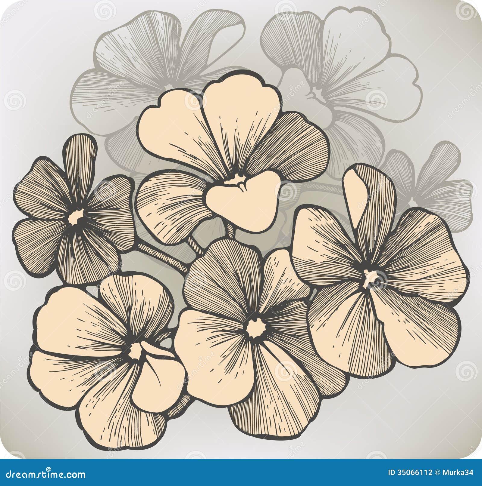 geranium flower drawing - photo #15