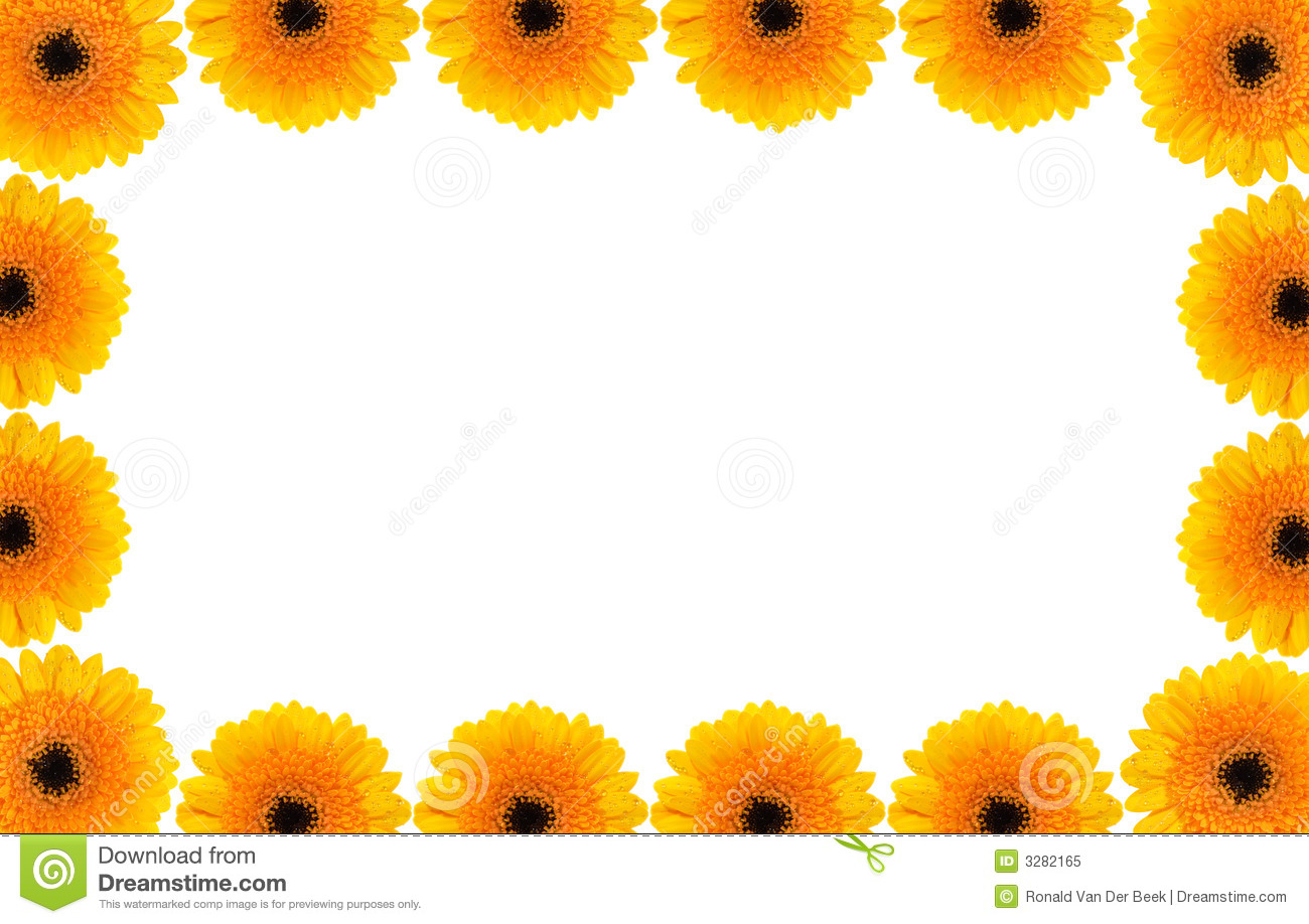 Gerber Daisy Border Royalty Free Stock Photo - Image: 3282165