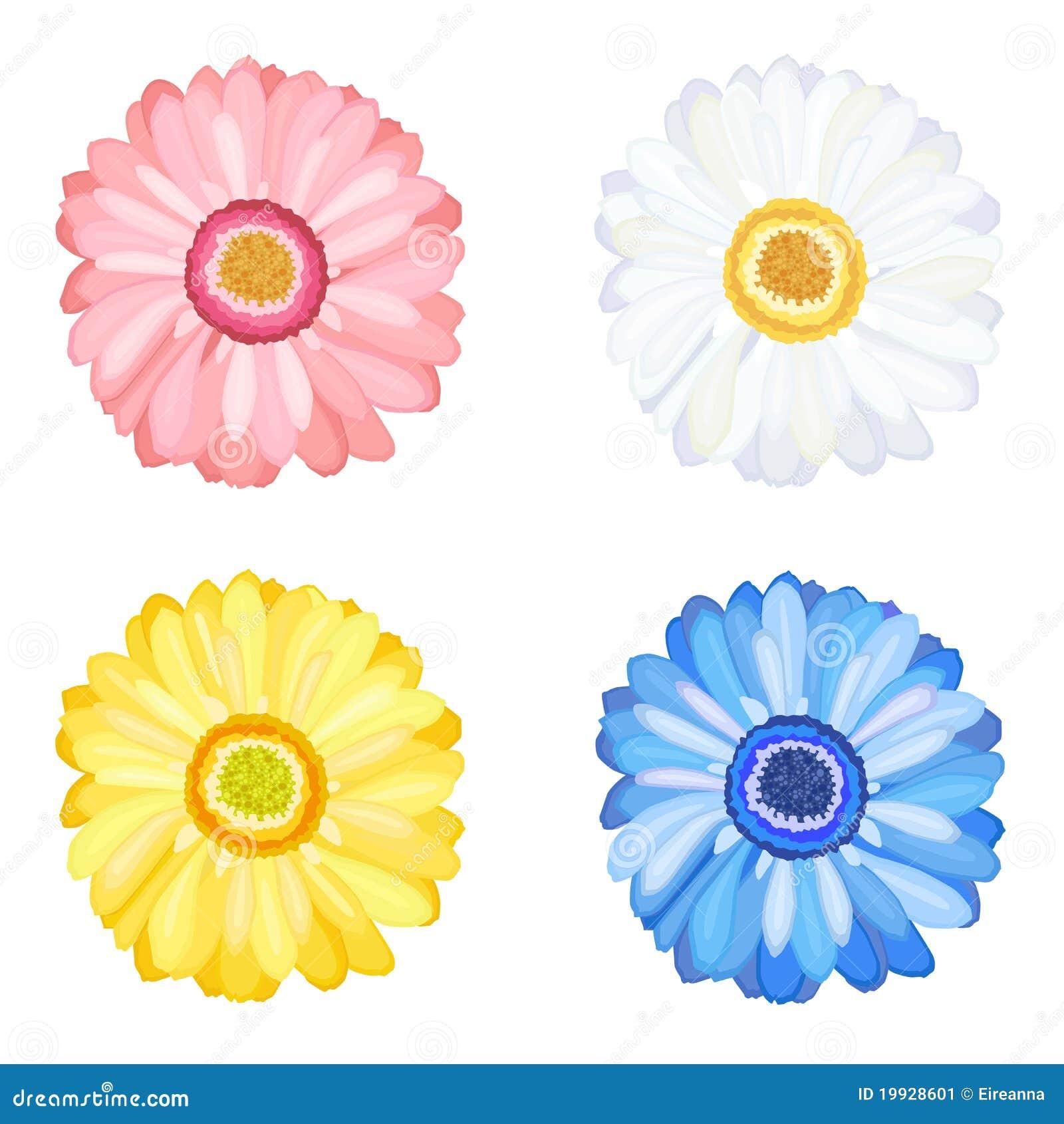 Gerbera λουλουδιών μαργαριτών