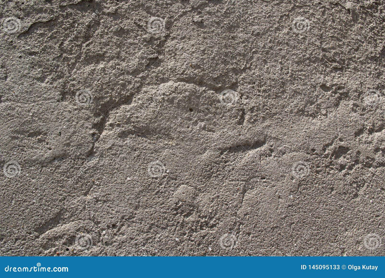 Geribbelde convexe cementmuur van grijze kleur