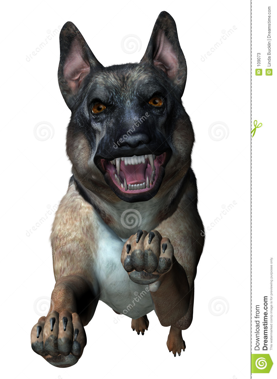 German Shepherd Attacks - includes clipping path