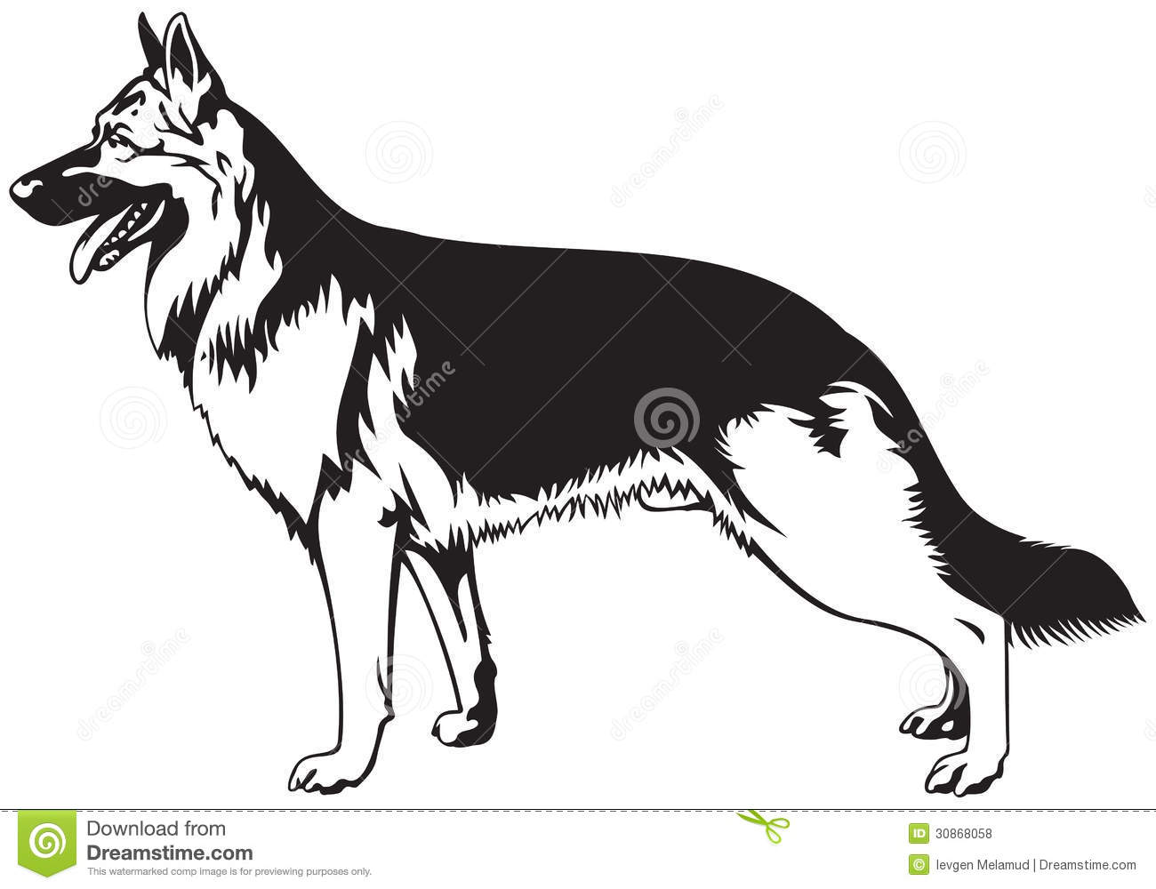 German Shepherd dog breed vector illustration from the dog show sign ...