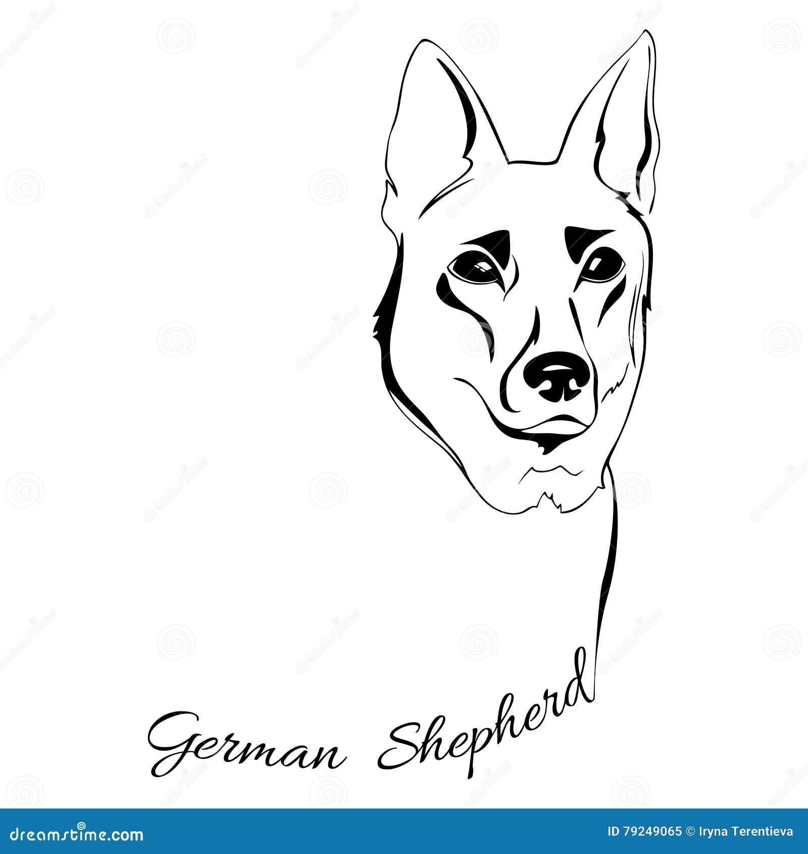 German Shepherd Dog Head Stock Vector Illustration Of Card 79249065
