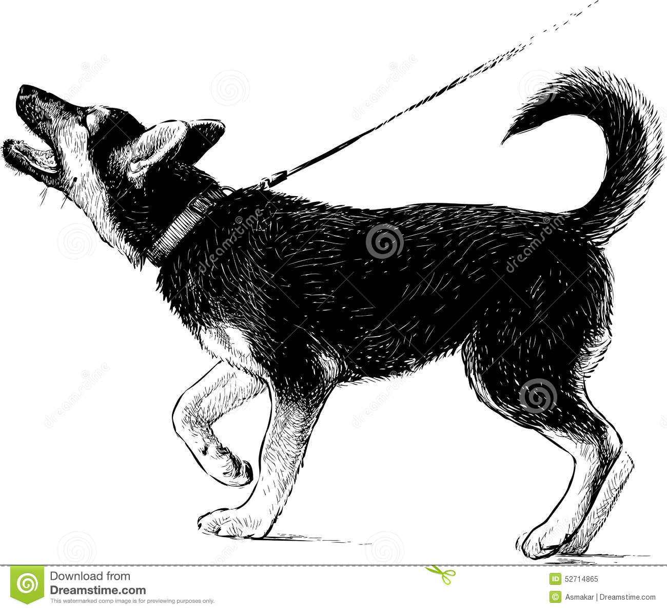 Barking Dog Pictures How To Draw