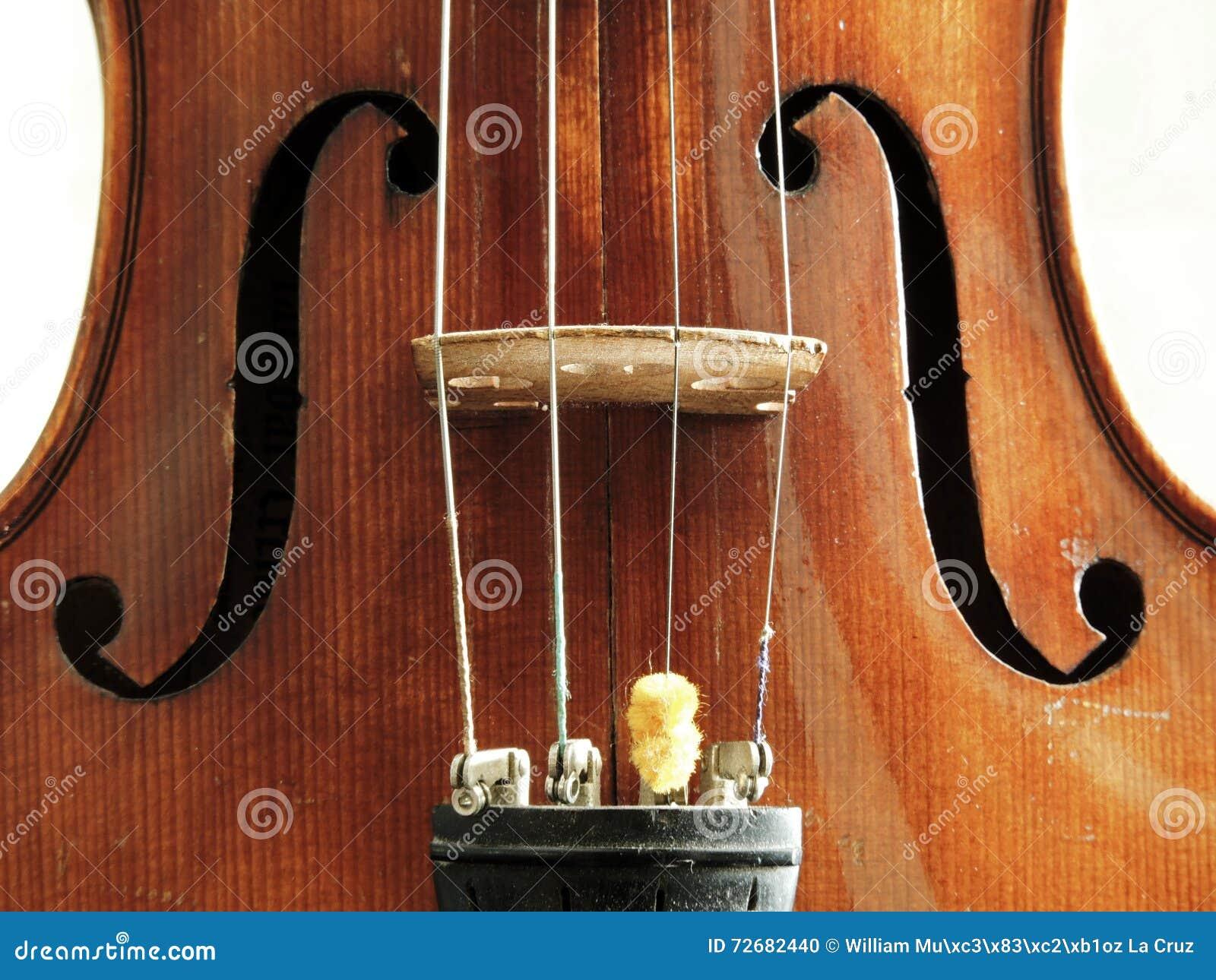 German violin stock photo  Image of musical, violinist