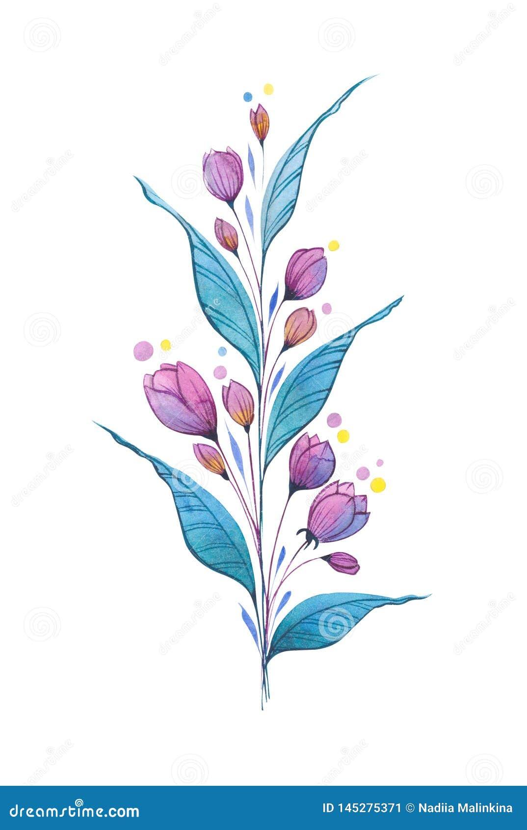 Agapanthus Foglie Gialle germogli di fiore porpora rosa luminosi con le foglie