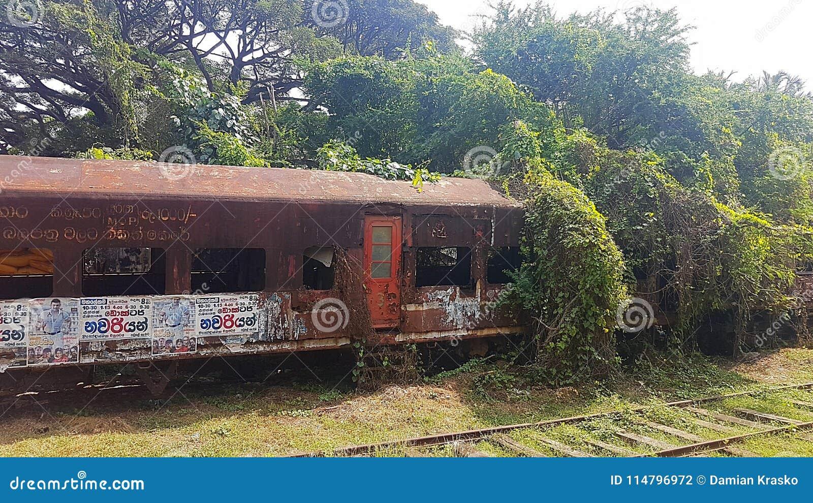 Geroeste trein op station in Sri Lanka
