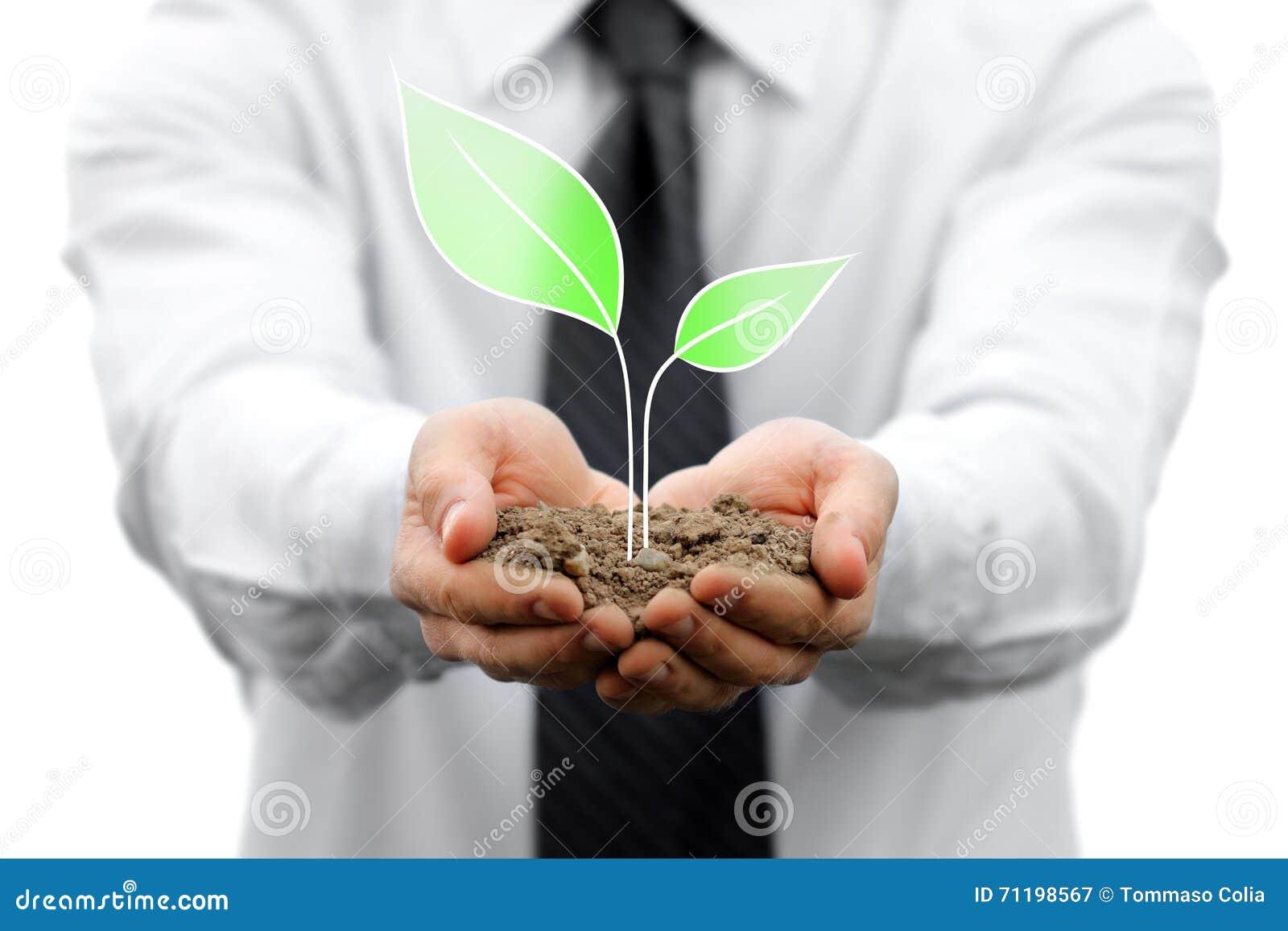 Geschäfts- und Naturmetapher