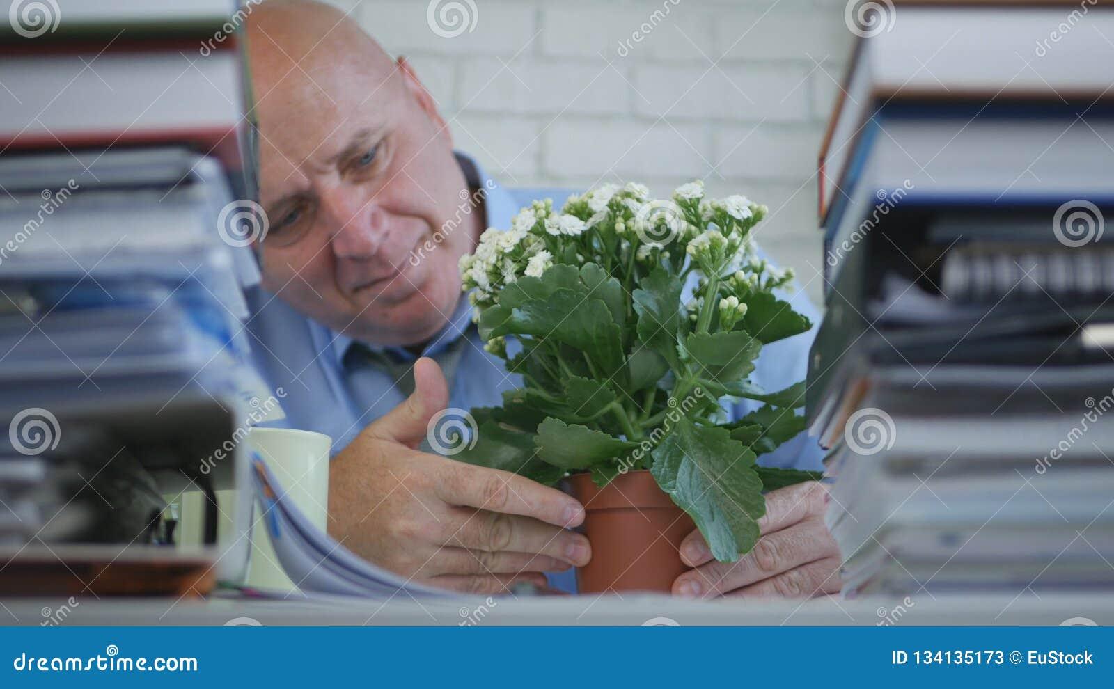 Geschäftsmann Relax Looking To eine Blume im Büro-Raum