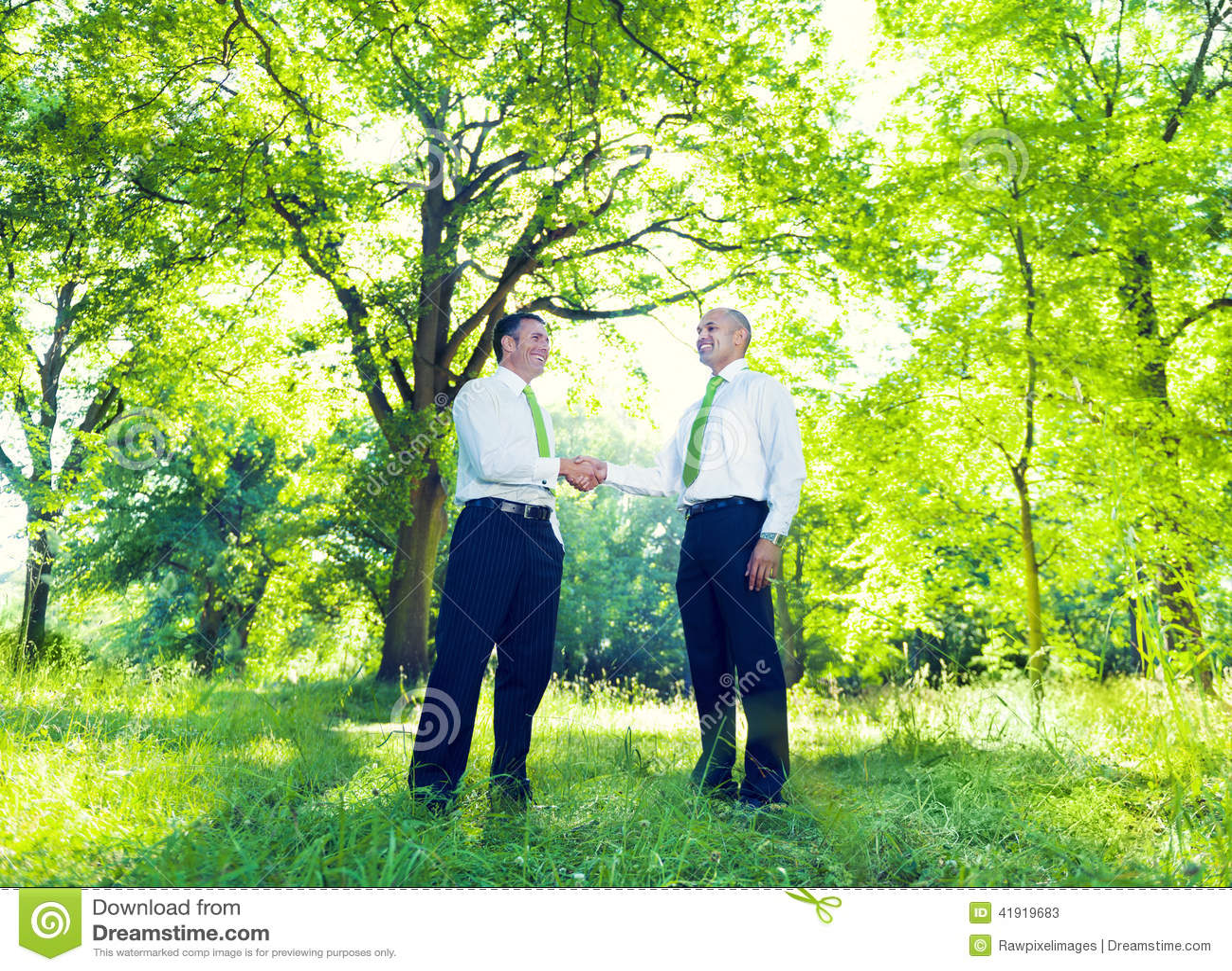 Geschäftsmannhändeschütteln im Garten