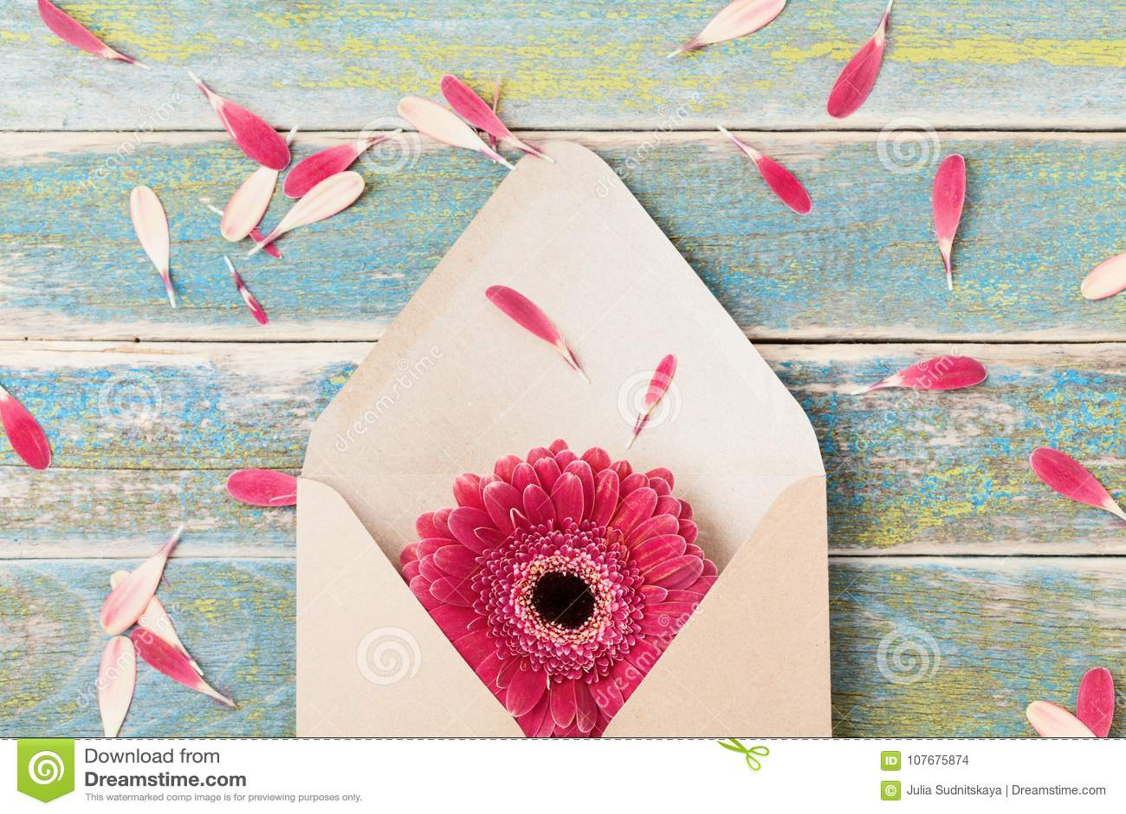 Geschenk- oder Geschenkmitteilungskonzept mit einzelner Gerberablume in Kraftpapier-Umschlag Grußkarte am Mutter- oder Frauentag
