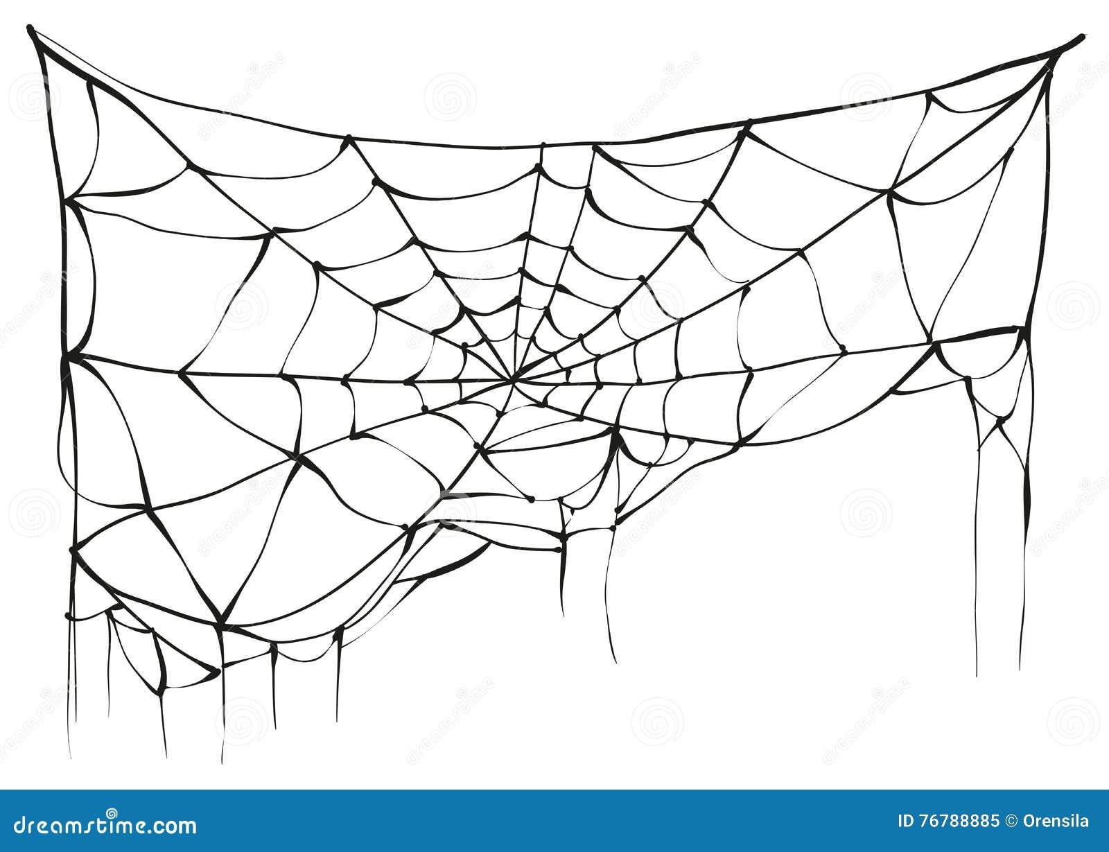 Gescheurd spinneweb op witte achtergrond