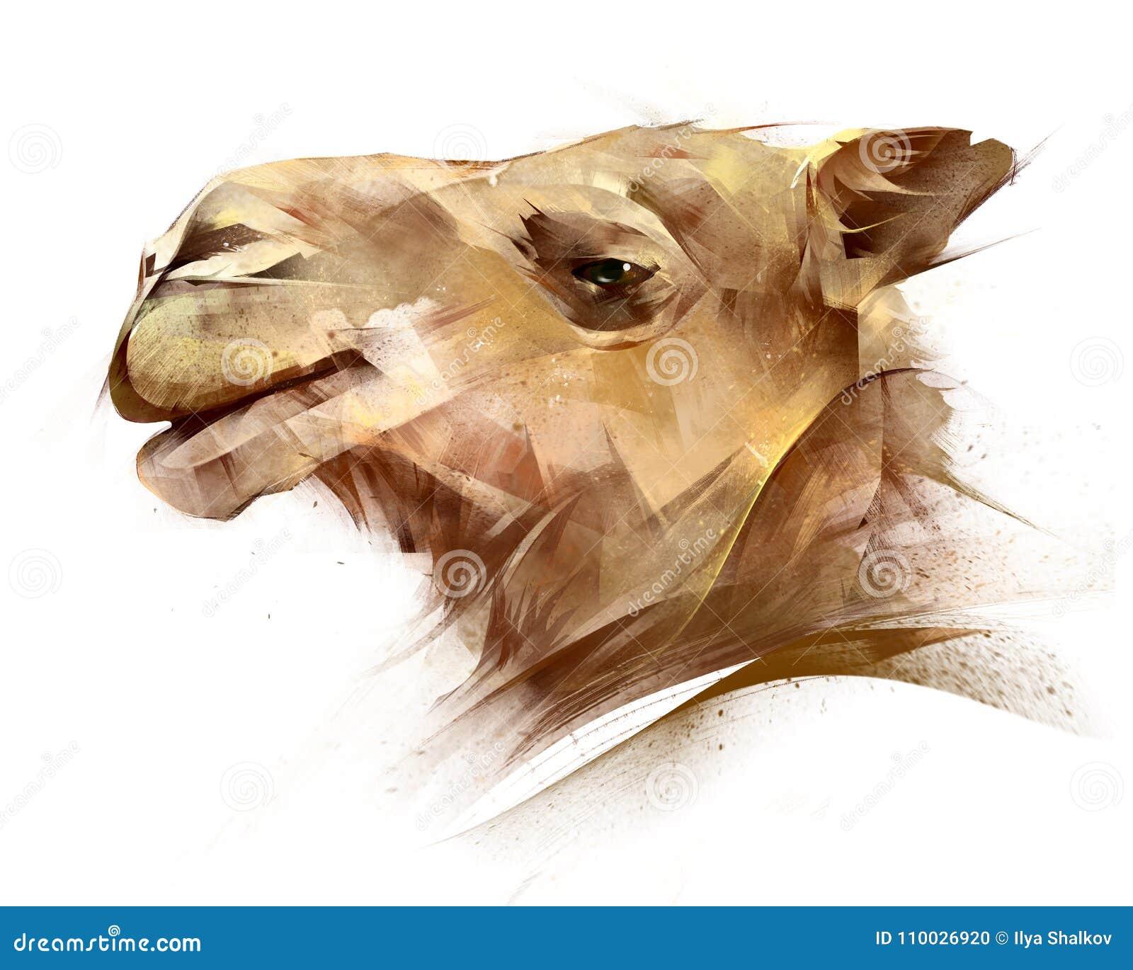 Geschilderd portret van een dierlijke kameel aan de kant
