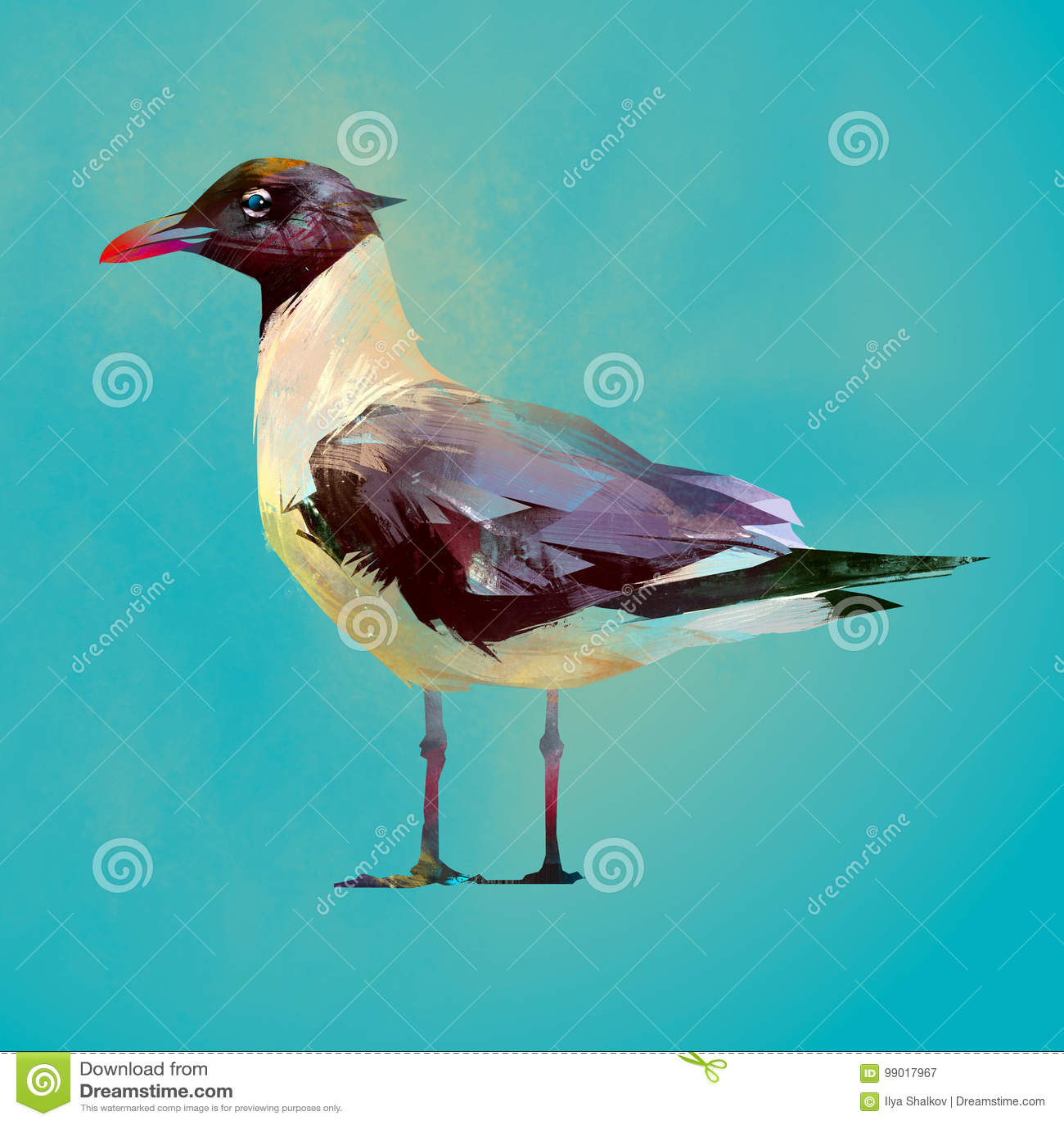 Geschilderde kleur gezette zeemeeuwvogel