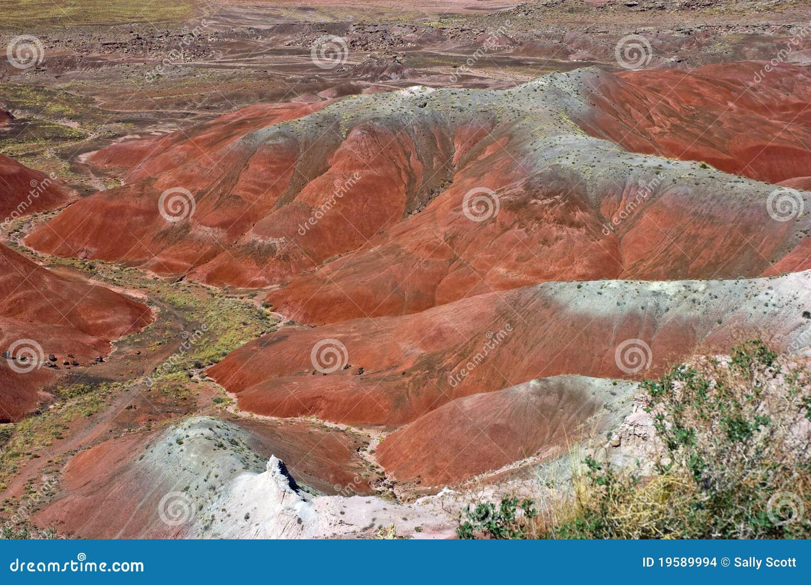 Geschilderde Woestijn